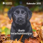 Kalender med hundvalpar 2015